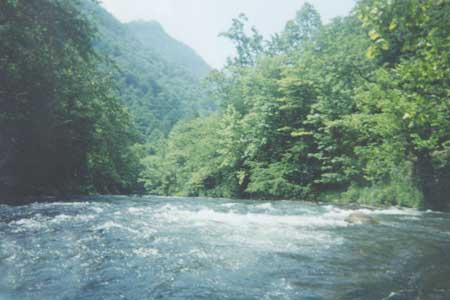 Nantahala River Gorge - Cabin for Rent by Owner near Nantahala River White Water Rafting